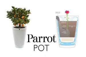 1 doniczka Parrot Pot = 1 drzewo