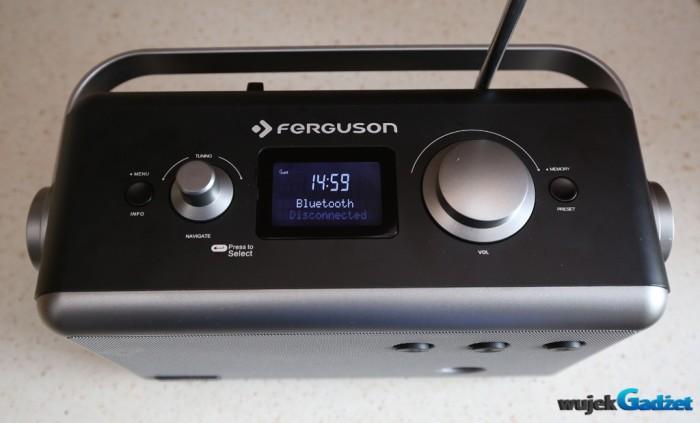 Ferguson_Regent_P1_13